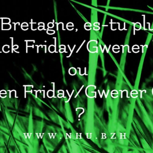 En Bretagne, êtes-vous Black Friday ou Green Friday ?
